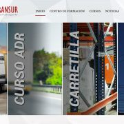 Nueva página web Formatransur